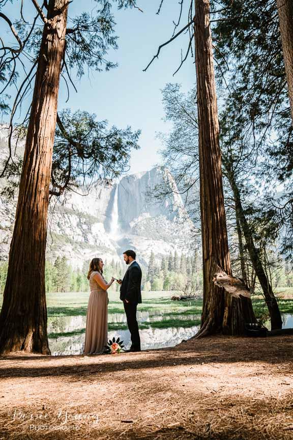 Swinging Bridge Yosemite Elopement Photographer -  Katie and Zach - Bessie Young 2019-126.jpg