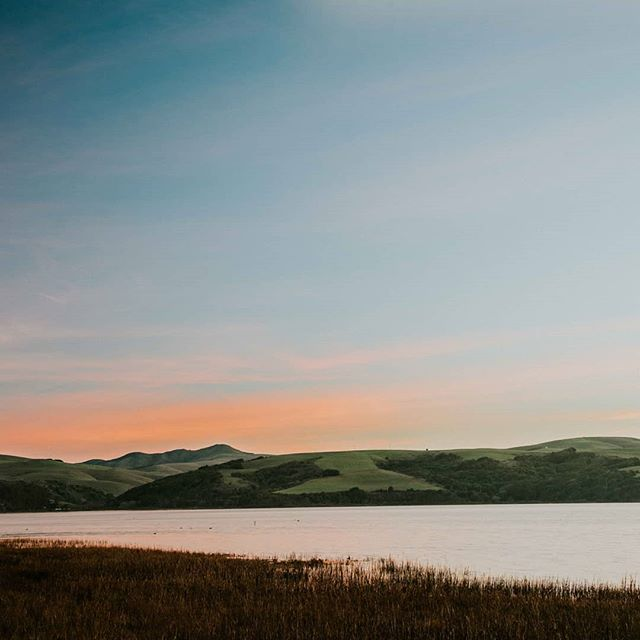 Is it me or does this one look like a painting? Comment below. . . . #sunset #sunsets #bayarea #pointreyesnps #pointreyes #pointreyesnationalseashore #landscapephotography #landscapephotographer