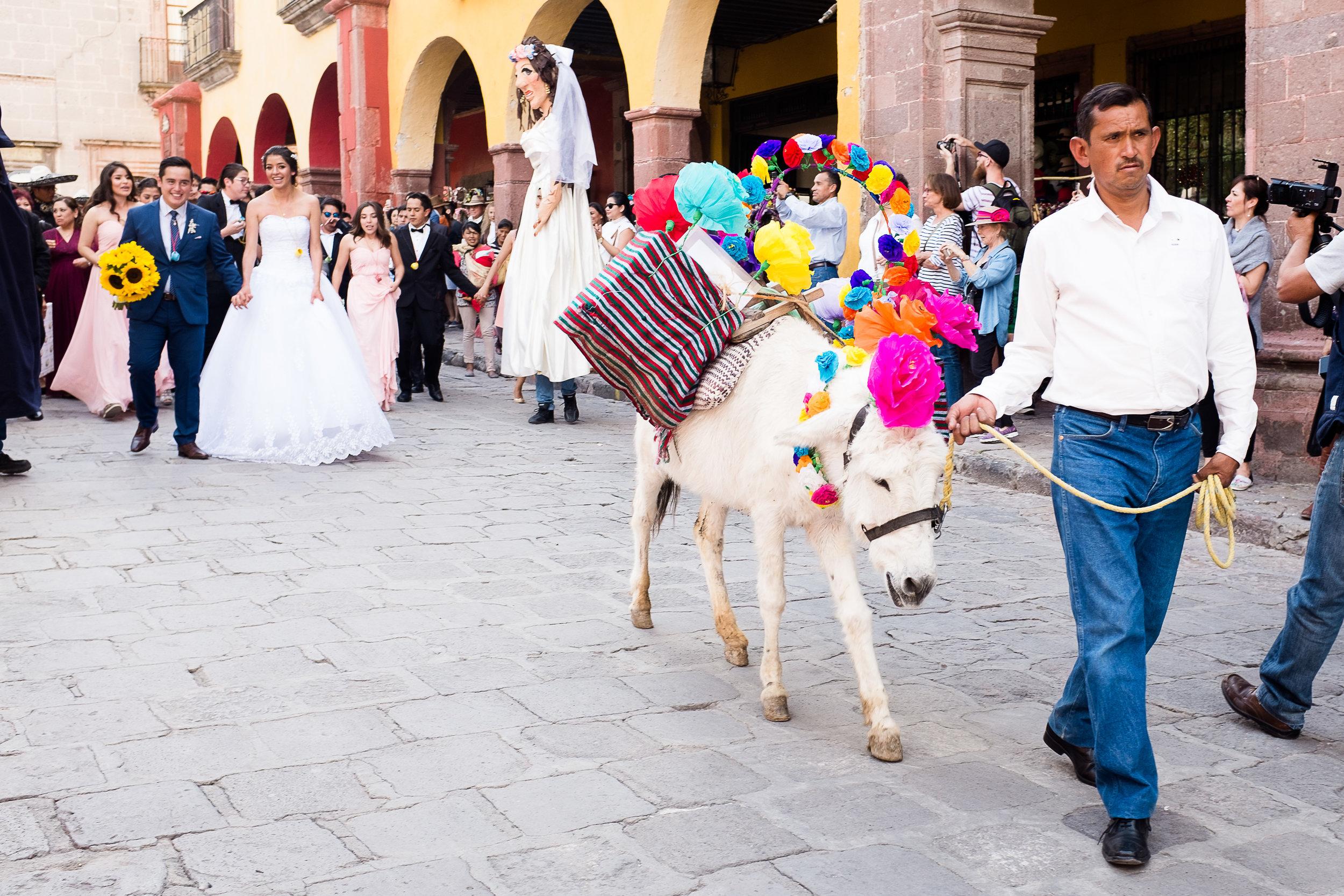 mexican-fine-art-wedding-traditions-donkey-mexico-karina-mora-prints-2.jpg