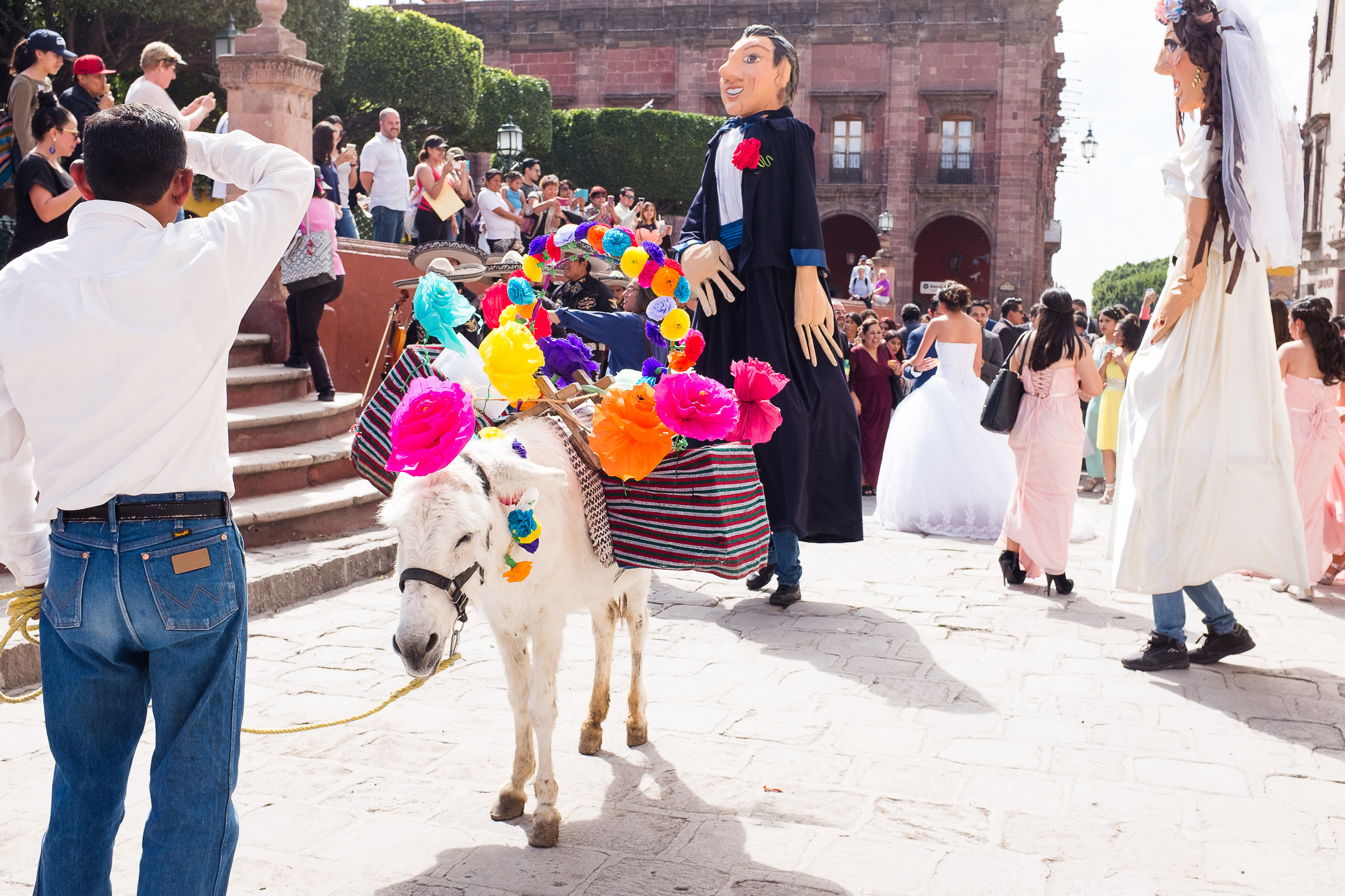 mexican-fine-art-wedding-traditions-donkey-mexico-karina-mora-prints-5.jpg