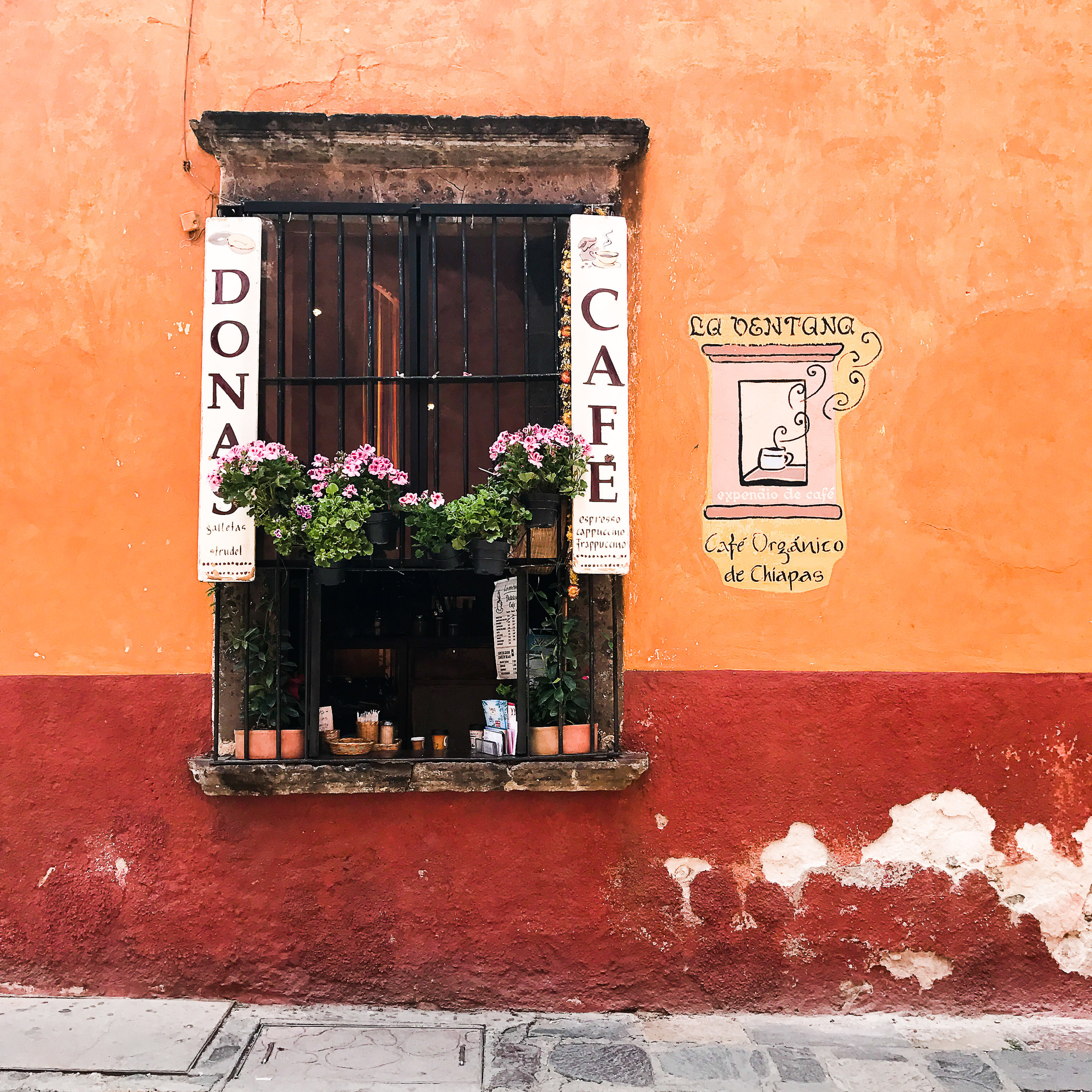 mexican-food-san-miguel-de-allende-restuarants-coffee-cafes-2.jpg