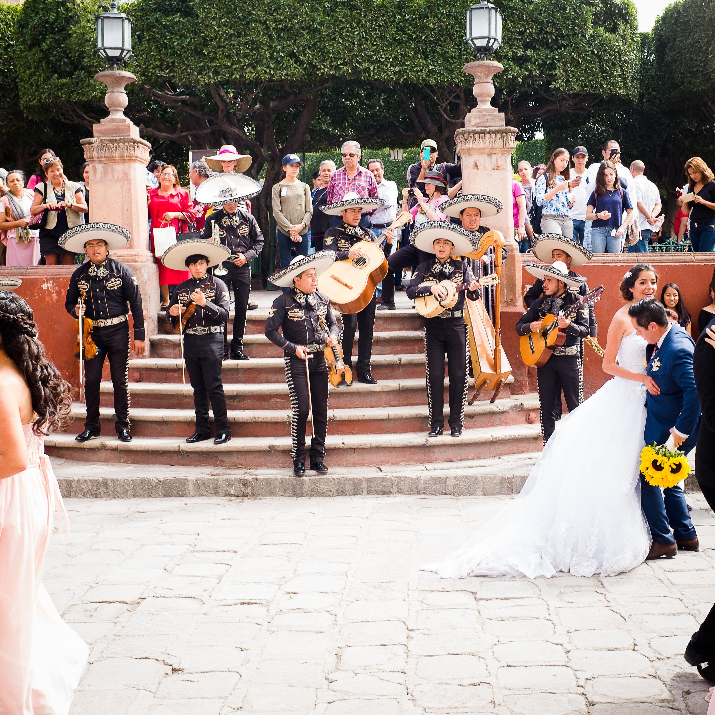 weddingdonkeyblog-8.jpg