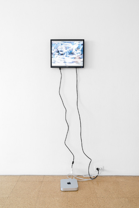 Petra Cortright, Winter in Mountain[0]5d_painted_version_with_transparency_strip, 2017, flash animation, 13 1/2 x 16 inches (monitor). Installation view 1301PE.