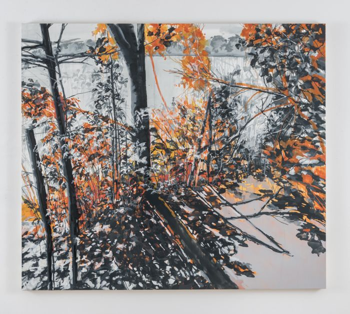 Kirsten Everberg, Walden Pond (Walden), 2016, oil and enamel on canvas over wood panel, 63 x 72 inches 160 x 182.9 cm