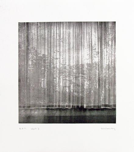 Paul Winstanley, Veil 2, 2008, Hand-drawn sugar lift aquatints with photo-etching