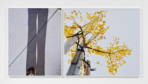 Uta Barth, Untitled, 2010, Mounted color photographs, 2 panels; 41 1/4 in x 32 1/4 in, 41 1/4 x 46 1/2 in.