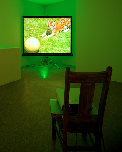 Diana Thater, Perfect Devotion Number Five, 2008, Digital projection