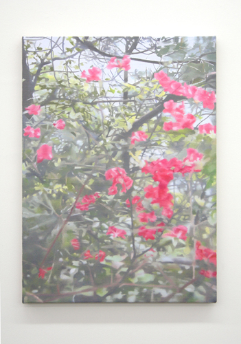 Paul Winstanley, Mountain Blossom, 2007, Oil on linen