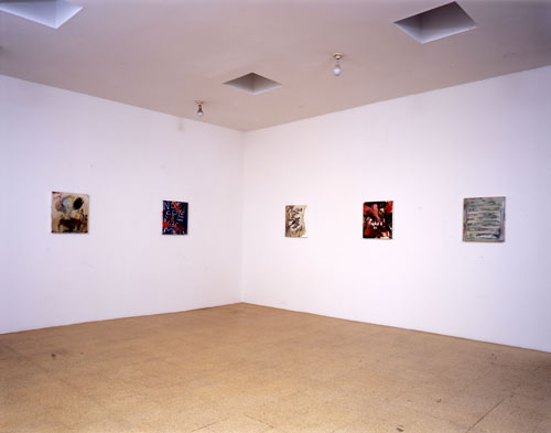 Small Paintings, Installation view, 2007
