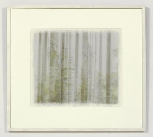 Paul Winstanley, Window ont he Pines 2, 2005, Watercolor, 43 x 51 cm