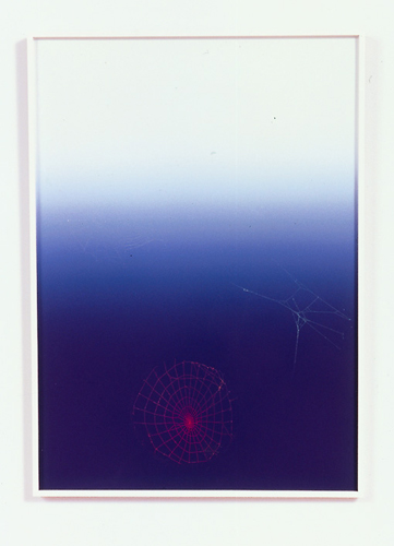 Pae White, Web Sampler, 2001, Spider web on Perfect Paper, 40 x 30 in.