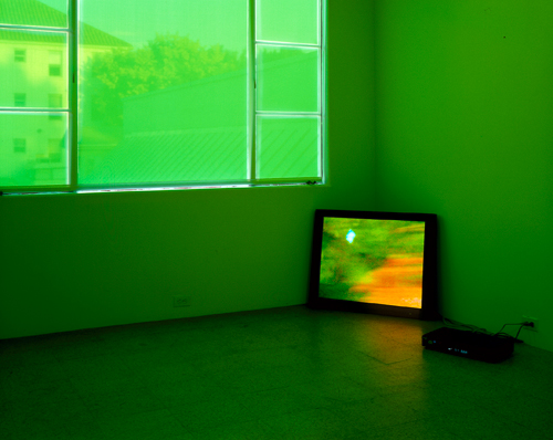 Diane Thater, Green Room (the sky is unfolding under you), 2001