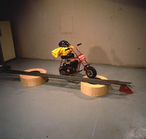 Jason Rhoades and Jorge Pardo, Ranch, 1996, Mixed media with 300' steel rebar