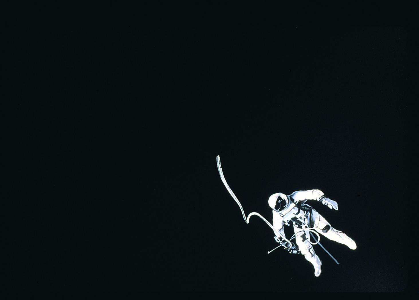 Goldstein.Astronaut.Det.email.jpg