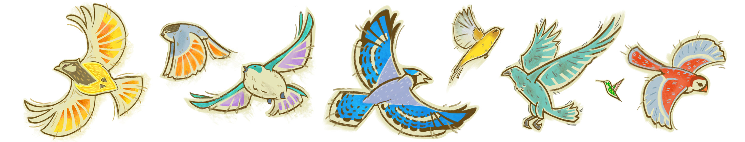 birds banner.jpg