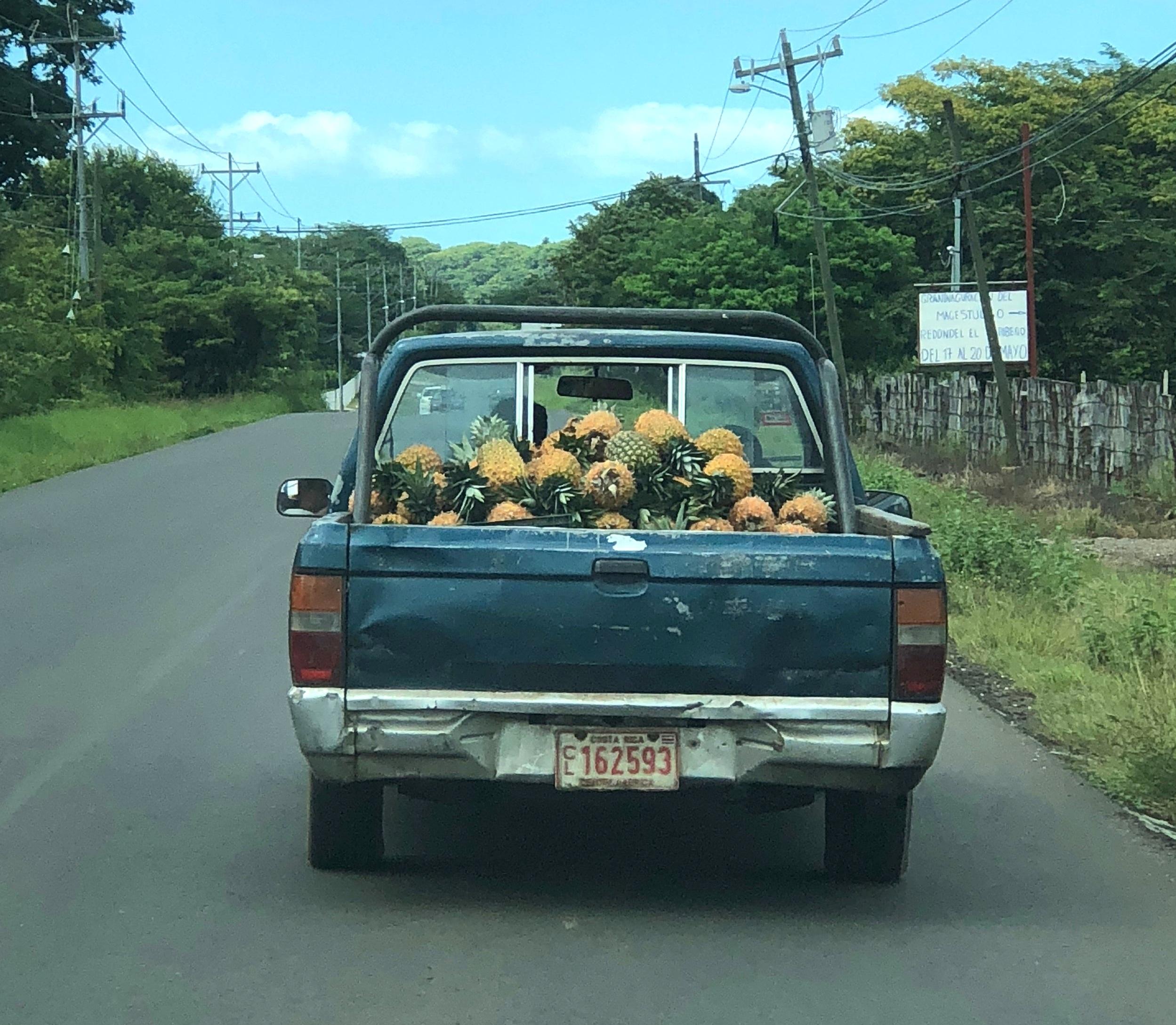 Pineapple Pickup