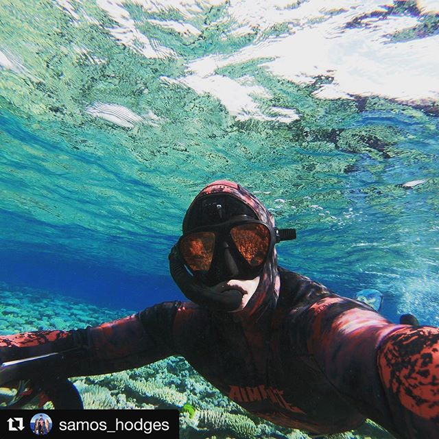#Repost @samos_hodges  25m Visibility is always a good time 🤘  #spearfishing #vitaminsea #aimrite #vermillion #freediving #goprohero6 #kingvenom #ocean #aimritespearfishing