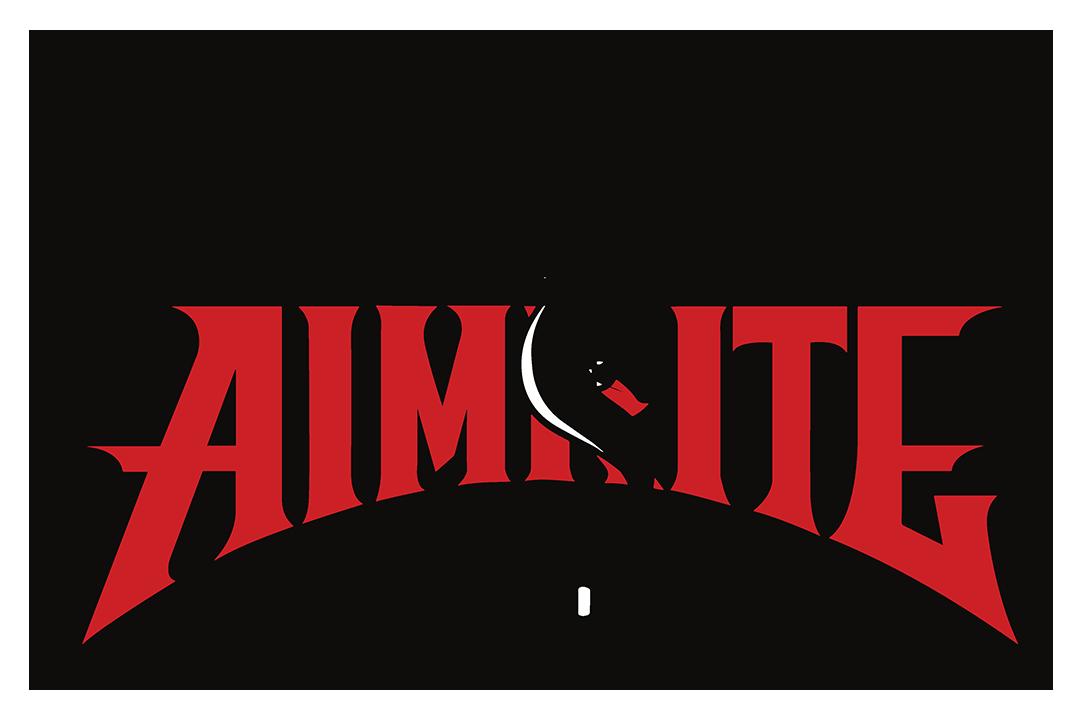 hunting aimrite