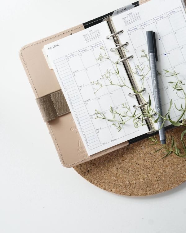 how-to-schedule-blog-posts-squarespace-wordpress.jpg