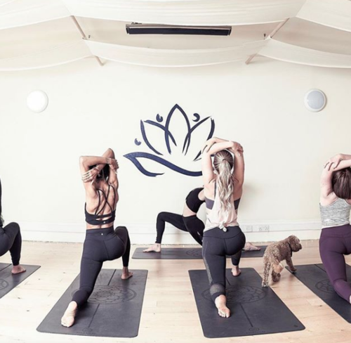 CORPORATE YOGA    I can come to your workplace to teach functional movement, mobility and yoga.