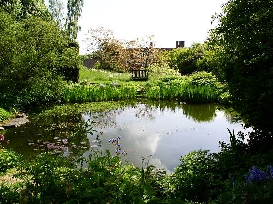 Wild garden pond Gertrude Jekyll
