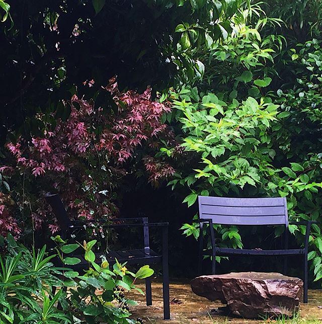 Après le déluge 3 - last one of the dripping autumn destinations in rejuvenated Haslemere garden @NewBarnGardenDesign⠀⠀⠀⠀⠀⠀⠀⠀⠀ ⠀⠀⠀⠀⠀⠀⠀⠀⠀ #gardens #gardendesigner #gardendesign #haslemere #surreygarden #newbarngardendesign #landscapedesign #gardeninspiration #surrey