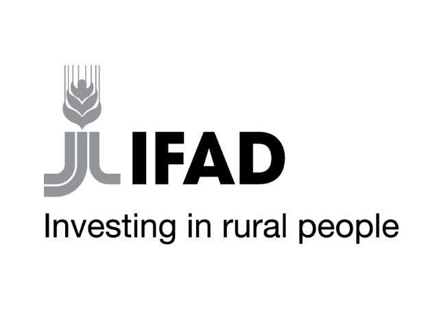 IFAD_logo_from_AgriCord (002).jpg