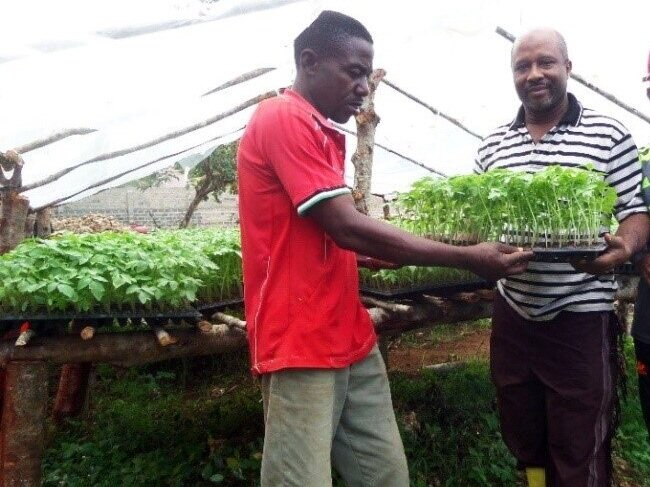 Dr. Omar Mohamed Suleiman, 50 year old (on the right) in his seedling nursery after engaging in Horticulture farming practices and innovative technologies as a TAHA Member.