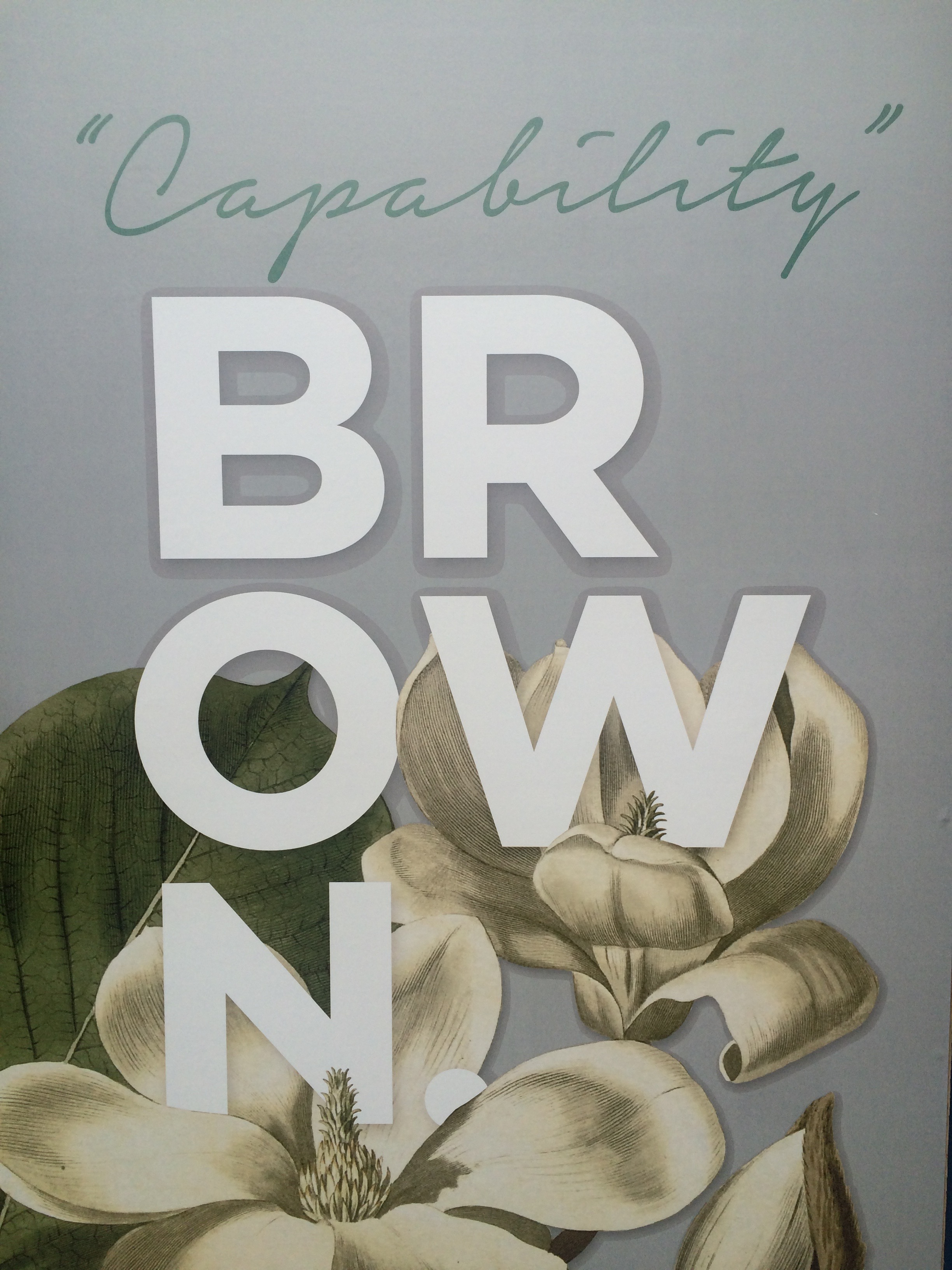Capability Brown 300