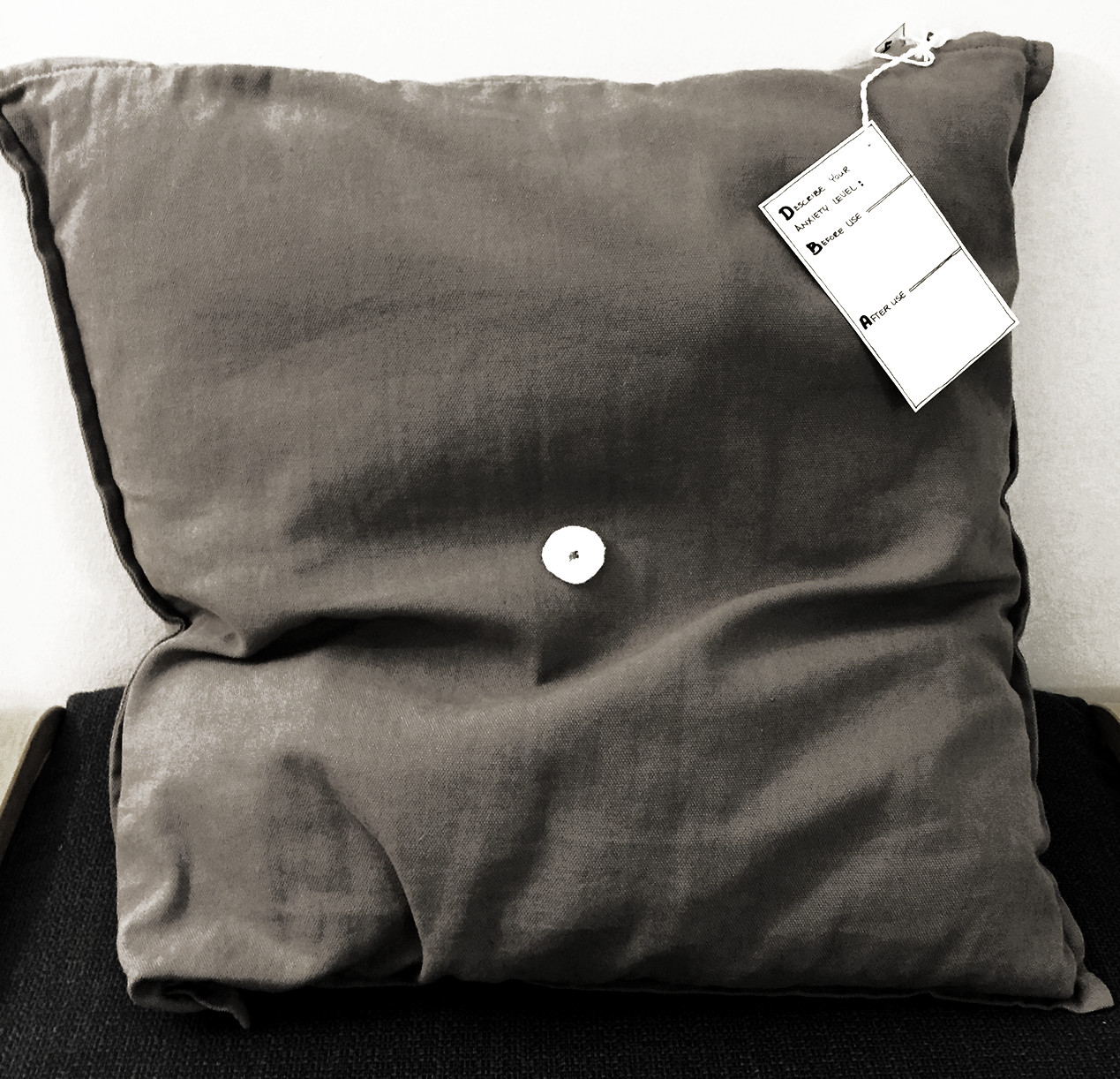 Activity 4: Interactive Pillow