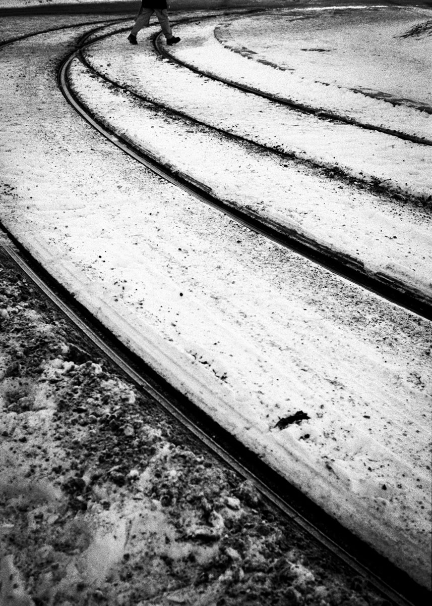 crossing snow tracks