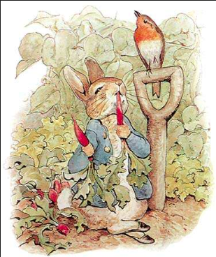 Peter Rabbit himself!
