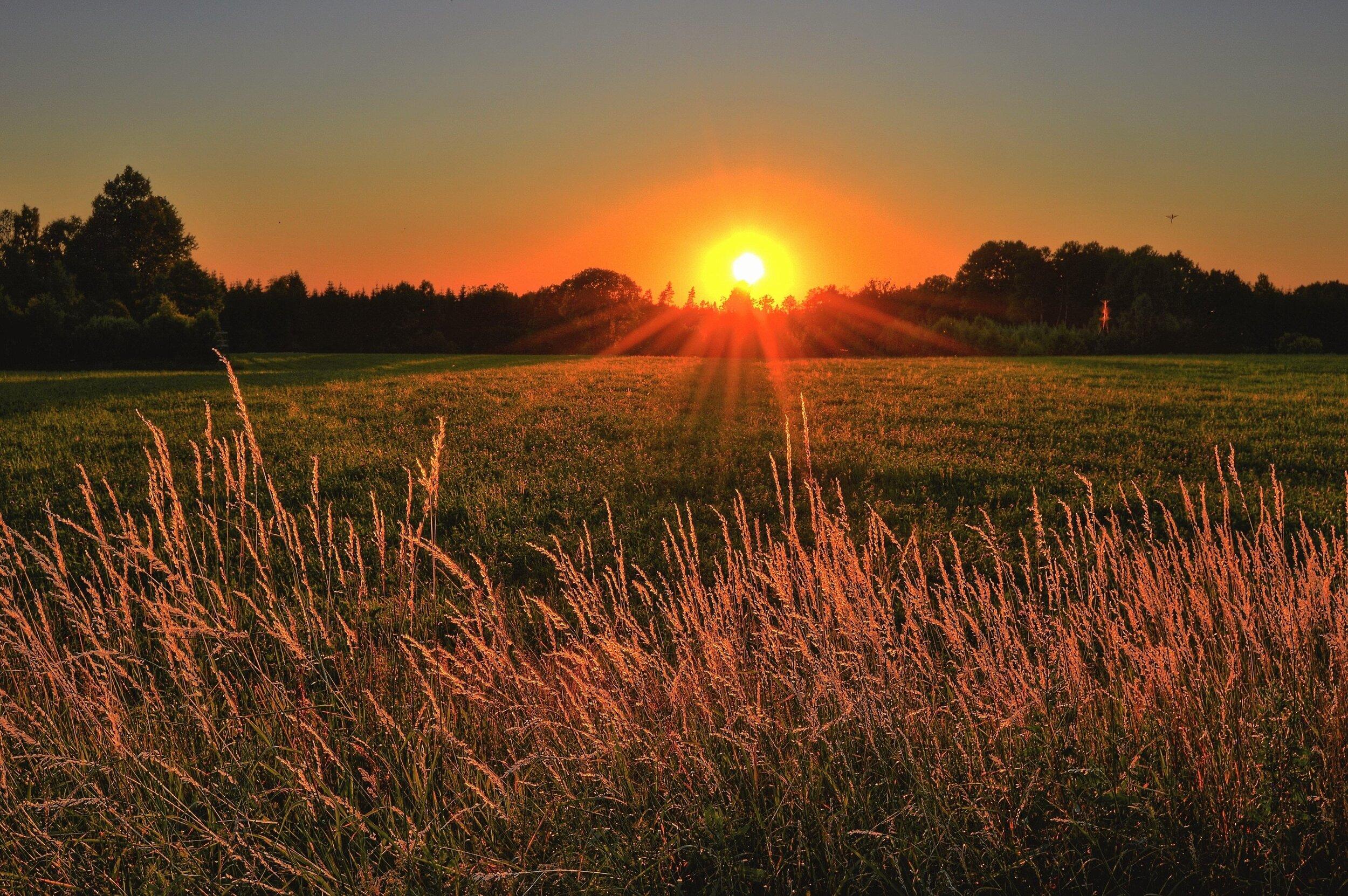 beautiful-cropland-dawn-1237119.jpg