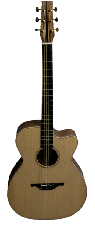 Sam McClaren Custom Guitar -
