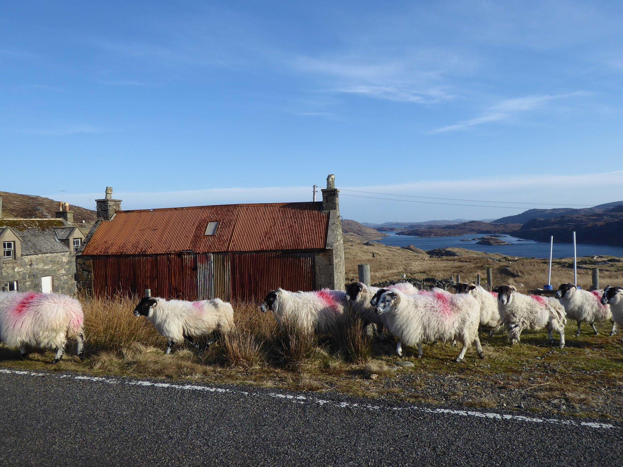 Eanacleit Loch Roag.jpg