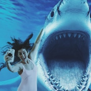 A little #tbt to that time I was brave enough to get a selfie with air jaws. Can you tell I'm equally obsessed and terrified of sharks? Here's to the last few nights of the best week @sharkweek // 🦈 🦈 🦈  ____ #sharkweek #sharkweek2019 #airjaws #ilovesharks #scaredofsharks #discoverychannel #shark #sharks #babyandabiscuit #photoshop #selfie #selfiewithashark #yolo #photo #naturephotography #memories