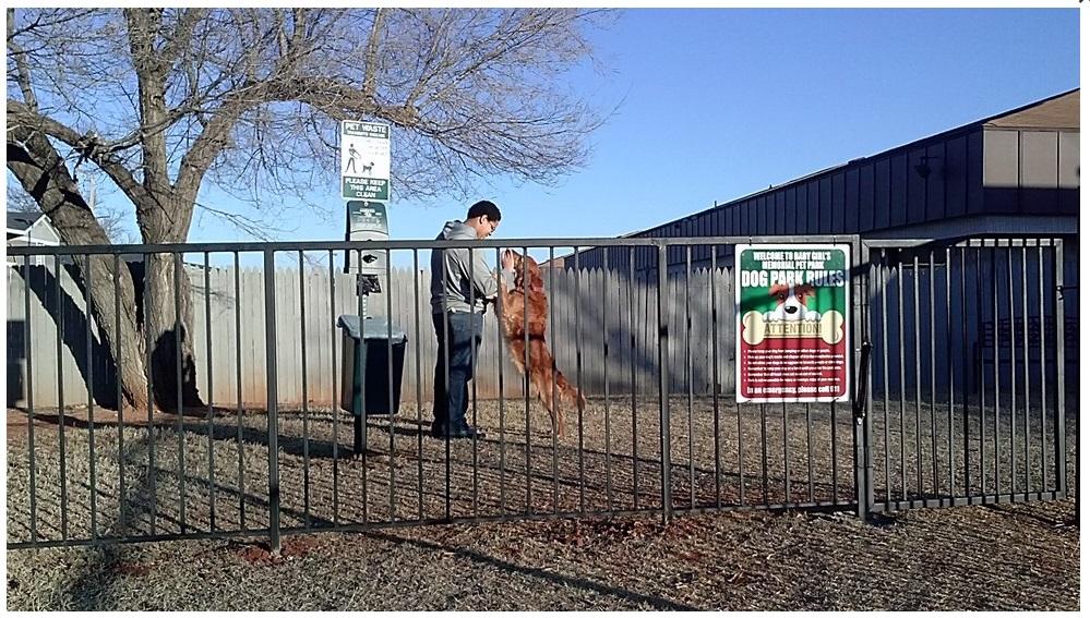 Solare Pet Park.jpg