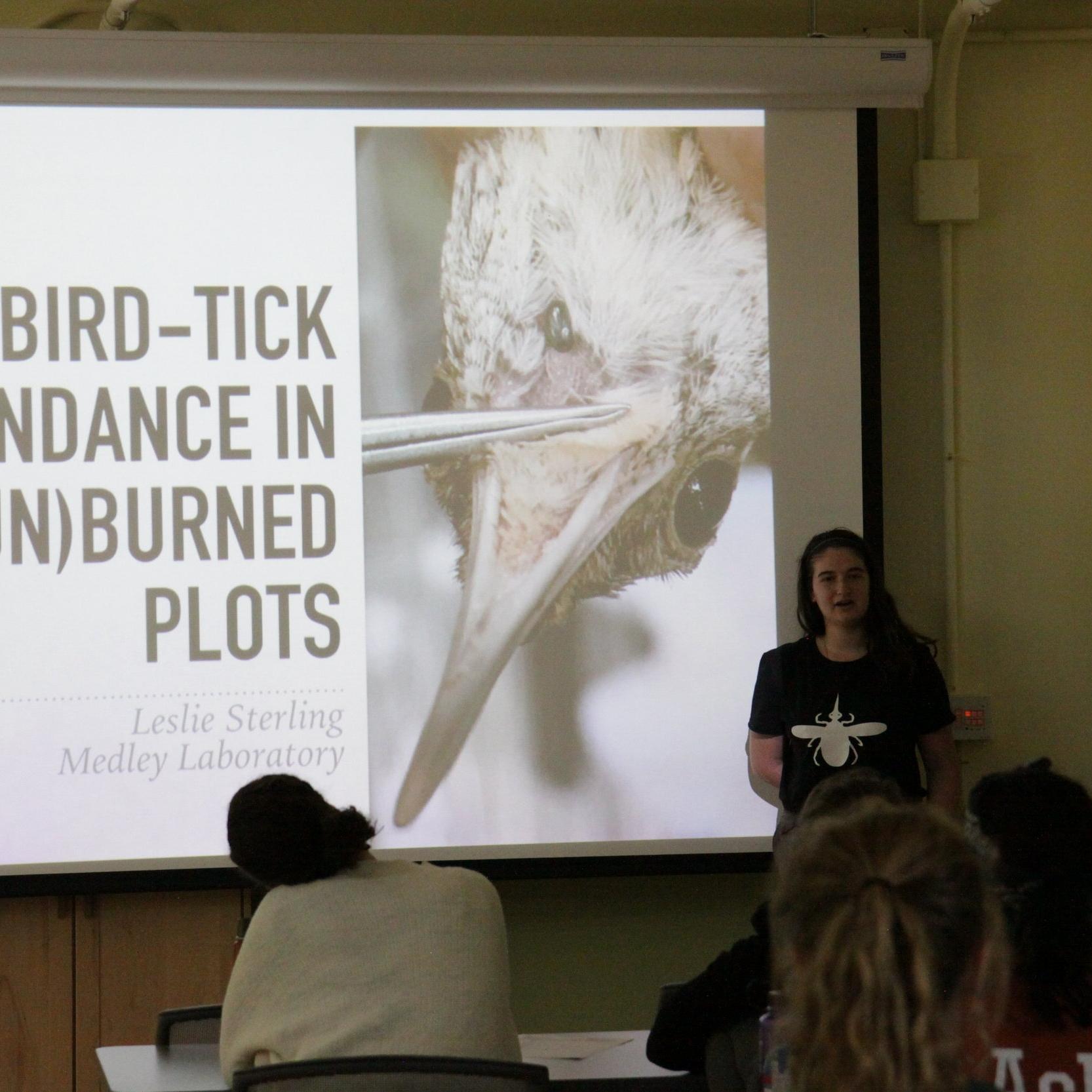 Leslie Sterling   Tyson Undergraduate Fellow '17 WashU '19  Project: Bird-tick abundance in burned and unburned forest plots