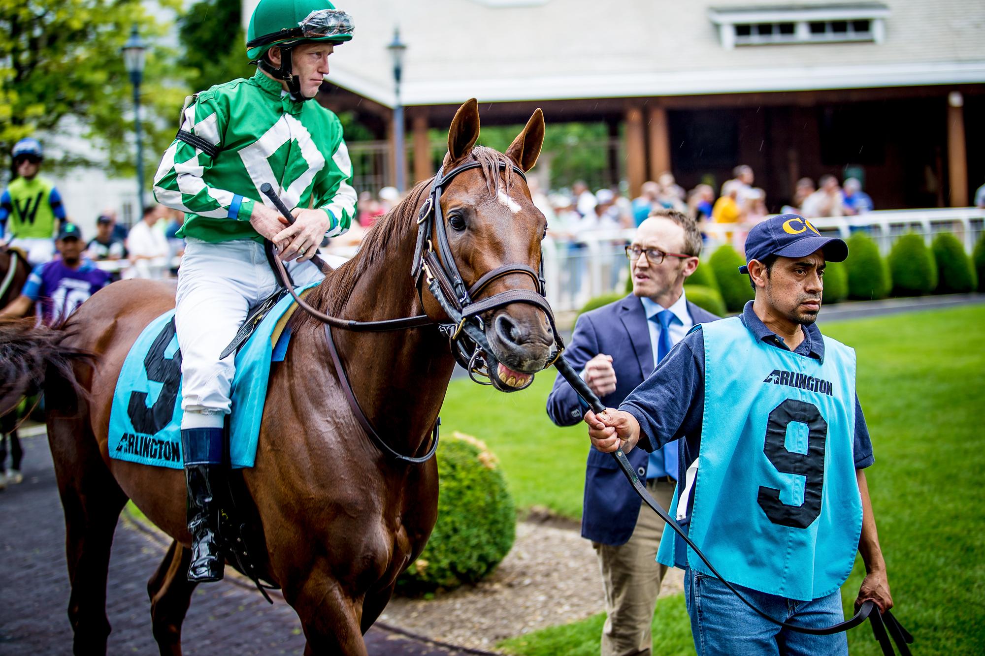 Race_Horses_401_2000x2000.jpg