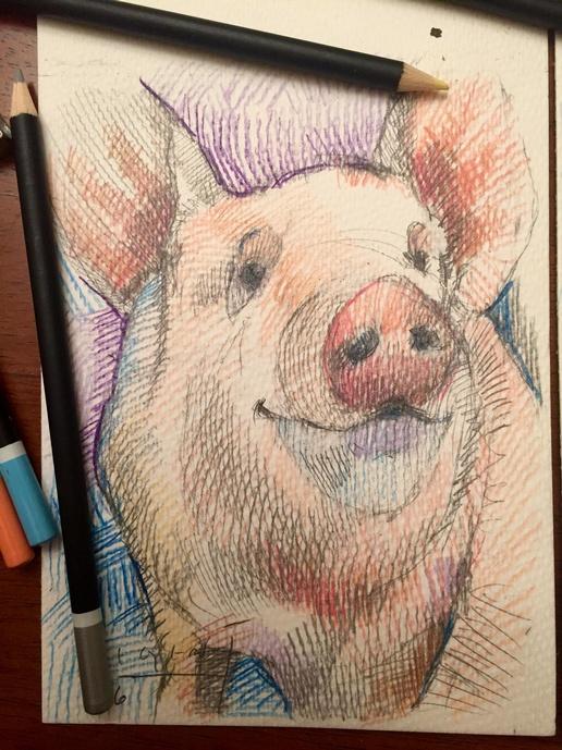 Tim Jaeger, Pig, 2016