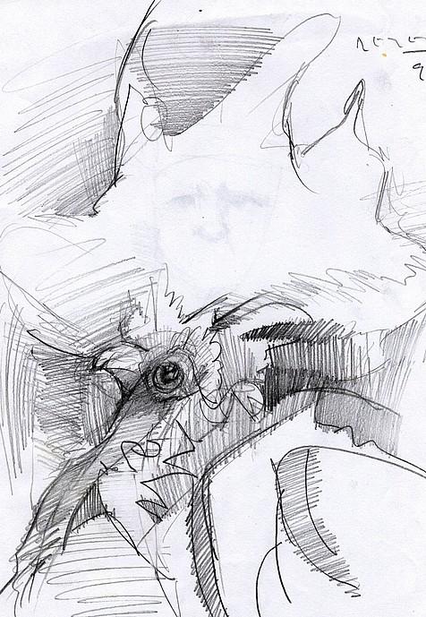 Tim Jaeger, Chicken Scratch #2, 2010