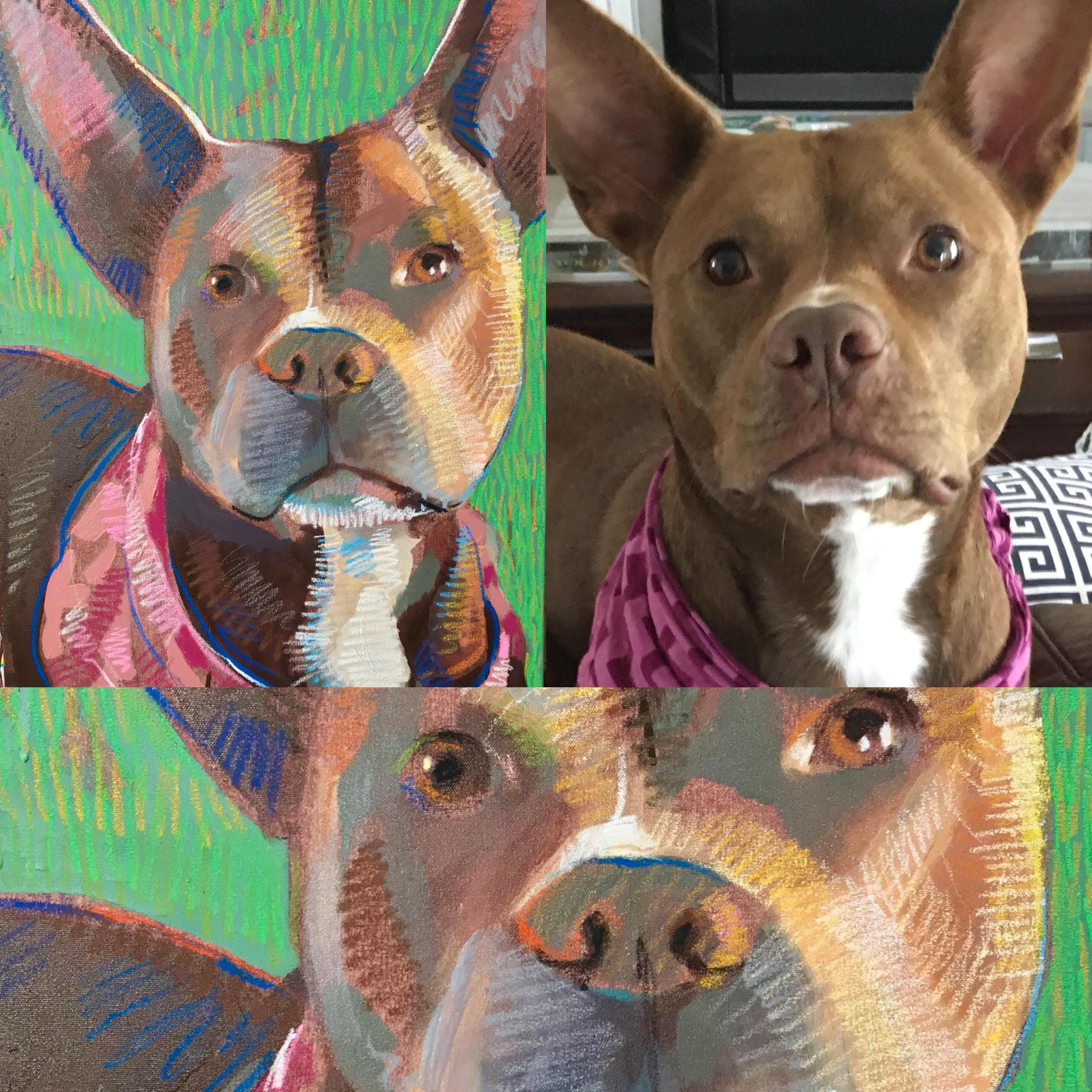 Tim-Jaeger-Commission-Dog.jpg
