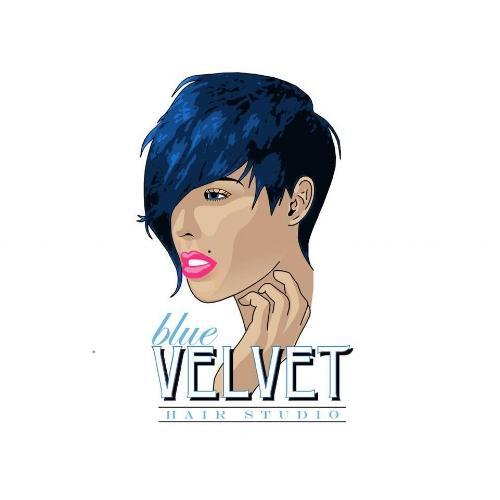 Blue Velvet Hair Studio logo.jpg