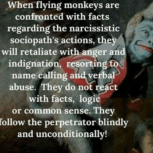when-flying-monkeys-are-confronted-with-facts-regarding-the-narcs-actions.png