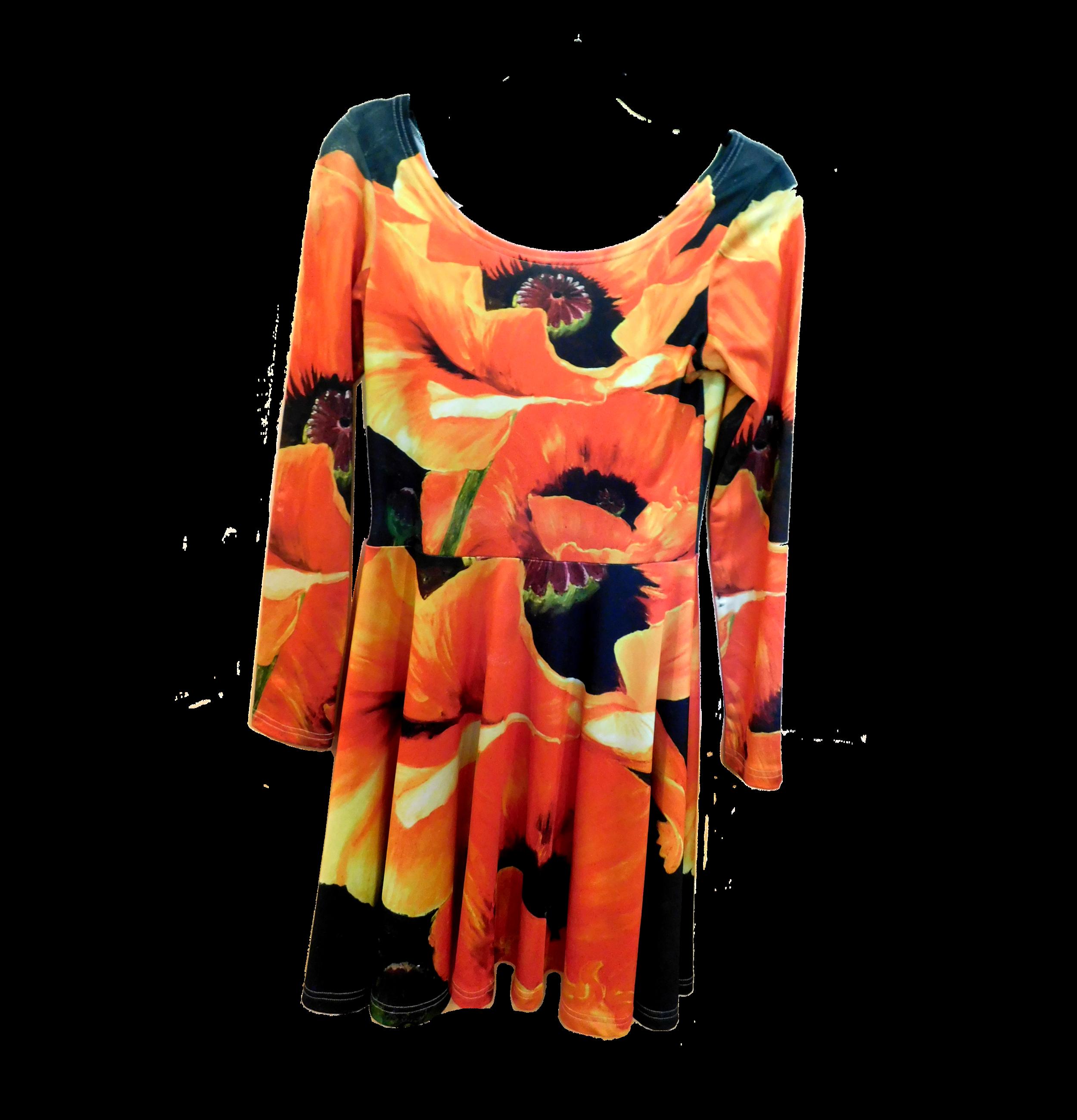 Long Sleeve Skater Dress - $ 60