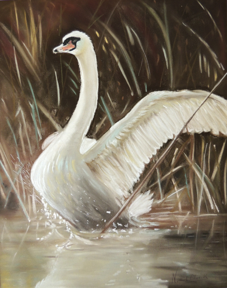 Chalk Pastel - Graceful chalk pastels starting at just $100 are available for commission.Email ndclerck@comcast.net for details
