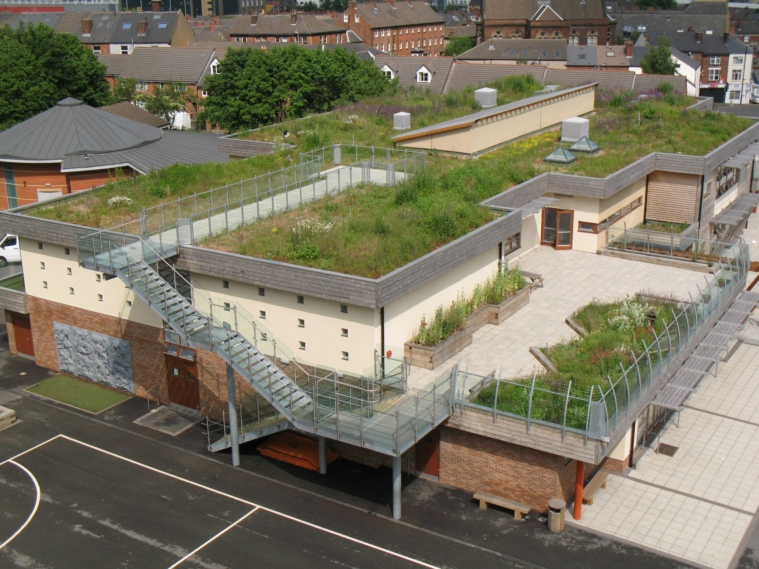 Green Roof on a School