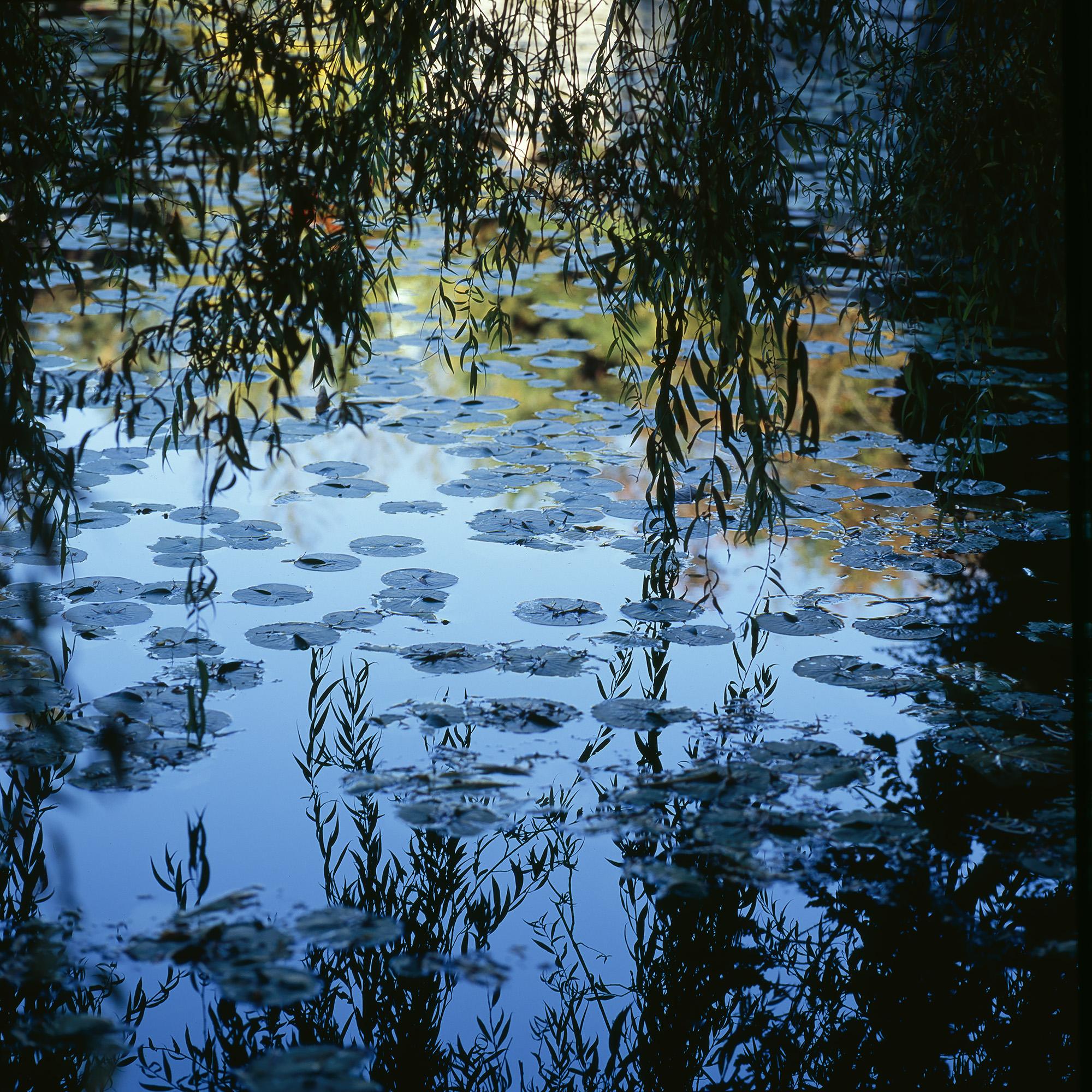 SunYatSen Pond 2-pass.jpg