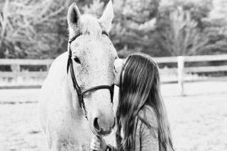 """A good rider can hear her horse speak to her. A great rider can hear her horse whisper."" -"