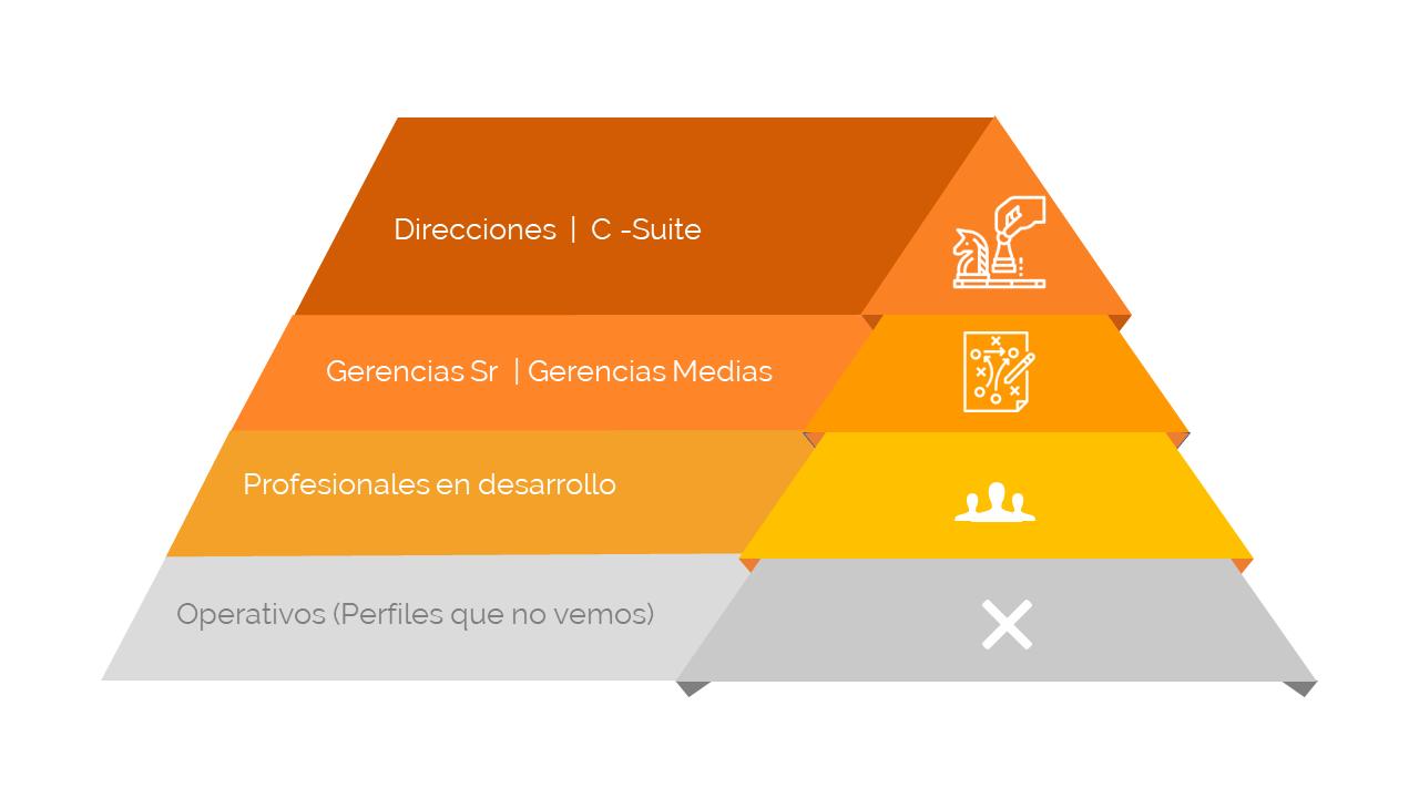 Piramide . Servicios que tocamos (Final).png